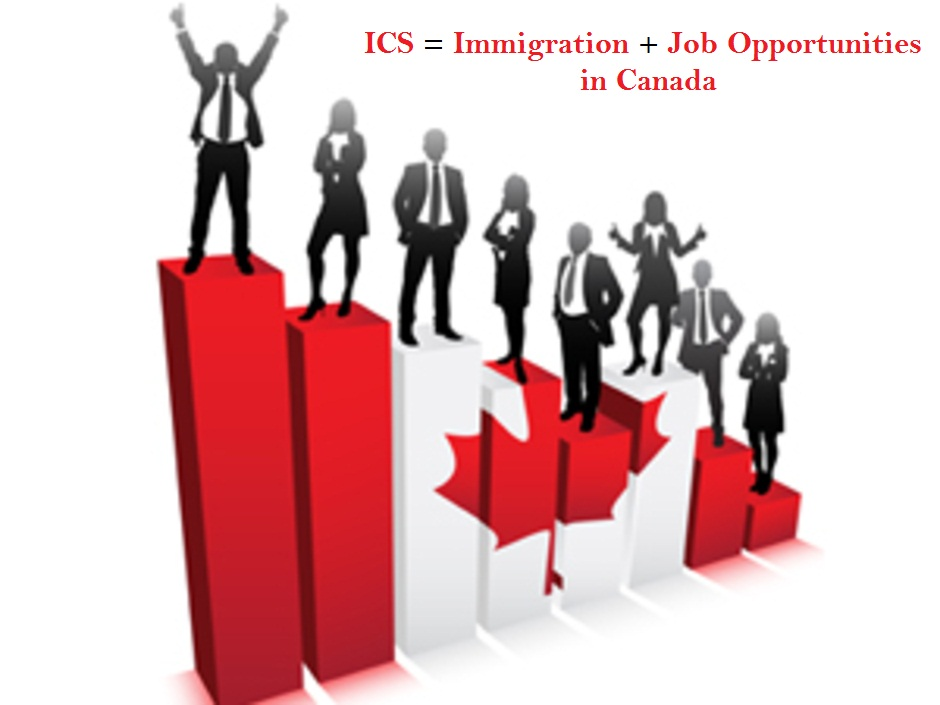 Options trader jobs canada